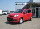 Fiat Panda Amore Rot 1